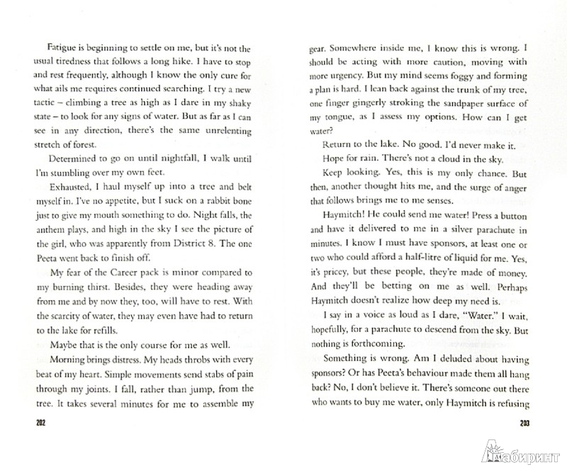 Иллюстрация 1 из 11 для The Hunger Games (original) - Suzanne Collins | Лабиринт - книги. Источник: Лабиринт