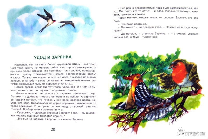 Иллюстрация 1 из 11 для Сказки у сороки на хвосте - Валерий Кастрючин | Лабиринт - книги. Источник: Лабиринт