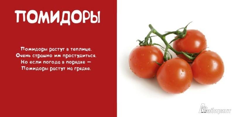 Иллюстрация 1 из 10 для Мои овощи - Леонид Фадеев | Лабиринт - книги. Источник: Лабиринт