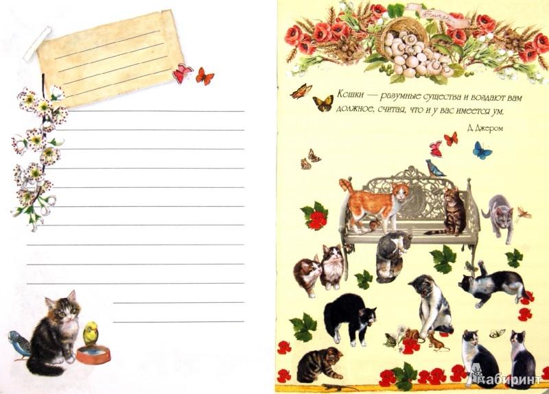 Иллюстрация 1 из 34 для Блокнот. Кошки А6 | Лабиринт - канцтовы. Источник: Лабиринт
