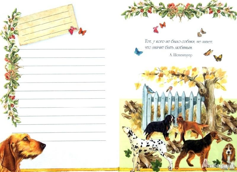 Иллюстрация 1 из 16 для Блокнот. Собаки А6 | Лабиринт - канцтовы. Источник: Лабиринт