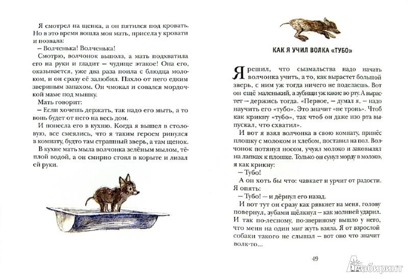 Иллюстрация 1 из 16 для Рассказы о животных - Борис Житков | Лабиринт - книги. Источник: Лабиринт