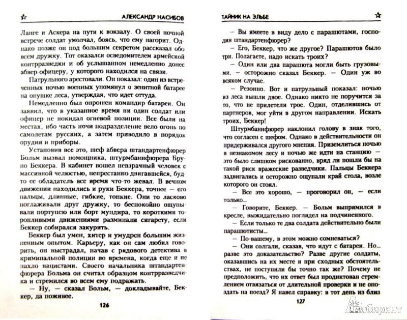 Иллюстрация 1 из 41 для Тайник на Эльбе - Александр Насибов | Лабиринт - книги. Источник: Лабиринт
