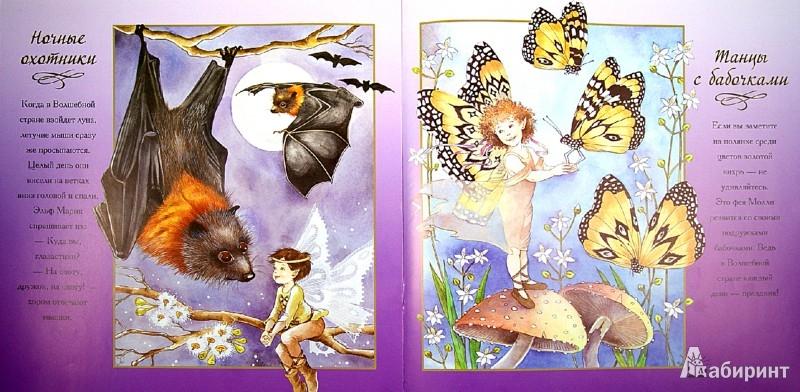 Иллюстрация 1 из 16 для Бирюзовое чудо и другие сказки - Ян Вэйд | Лабиринт - книги. Источник: Лабиринт
