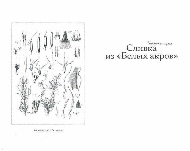 Иллюстрация 1 из 16 для Происхождение всех вещей - Элизабет Гилберт | Лабиринт - книги. Источник: Лабиринт