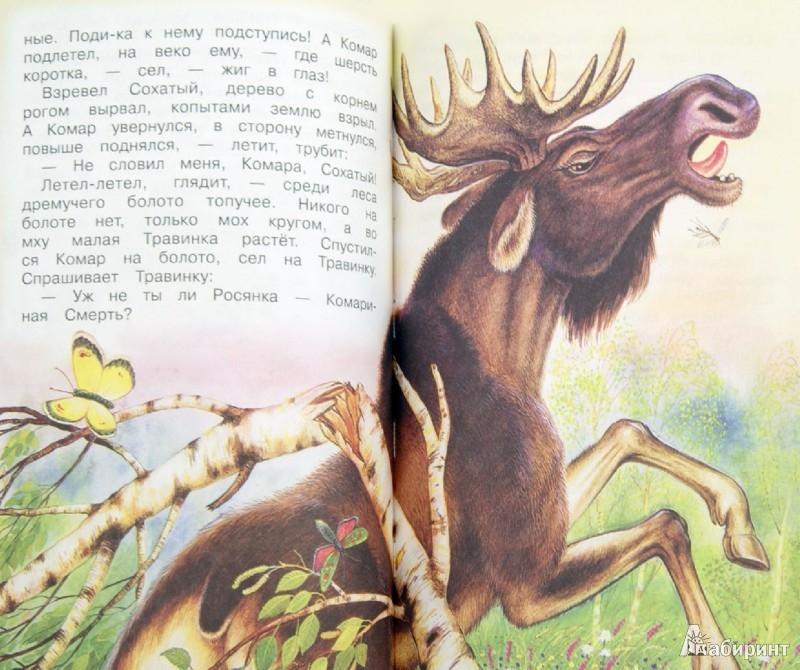 Иллюстрация 1 из 14 для Все самые любимые сказки и рассказы о животных - Бианки, Сладков, Пришвин, Шим | Лабиринт - книги. Источник: Лабиринт