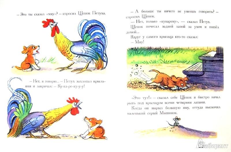 Иллюстрация 1 из 29 для Сказки и картинки - Владимир Сутеев   Лабиринт - книги. Источник: Лабиринт
