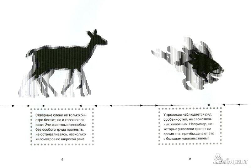 Иллюстрация 1 из 18 для Животные - Марта Дебуш | Лабиринт - книги. Источник: Лабиринт