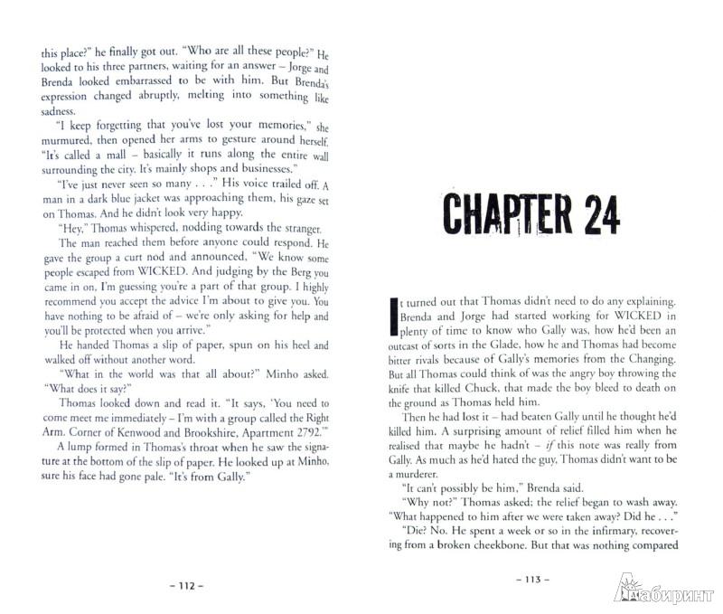 Иллюстрация 1 из 25 для The Death Cure - James Dashner   Лабиринт - книги. Источник: Лабиринт