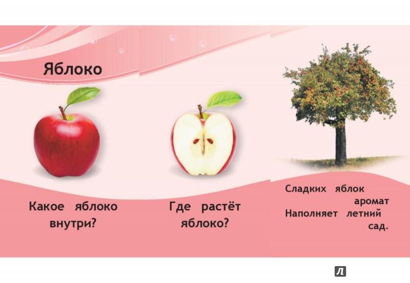 Иллюстрация 1 из 18 для Овощи и фрукты | Лабиринт - книги. Источник: Лабиринт