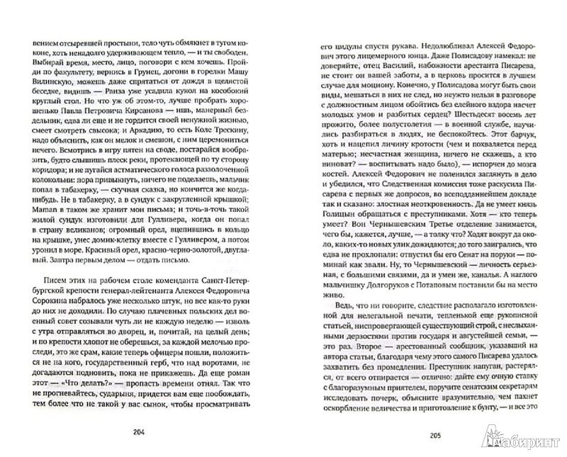 Иллюстрация 1 из 23 для Литератор Писарев - Самуил Лурье | Лабиринт - книги. Источник: Лабиринт