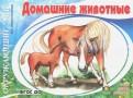 Домашние животные. ФГОС ДО