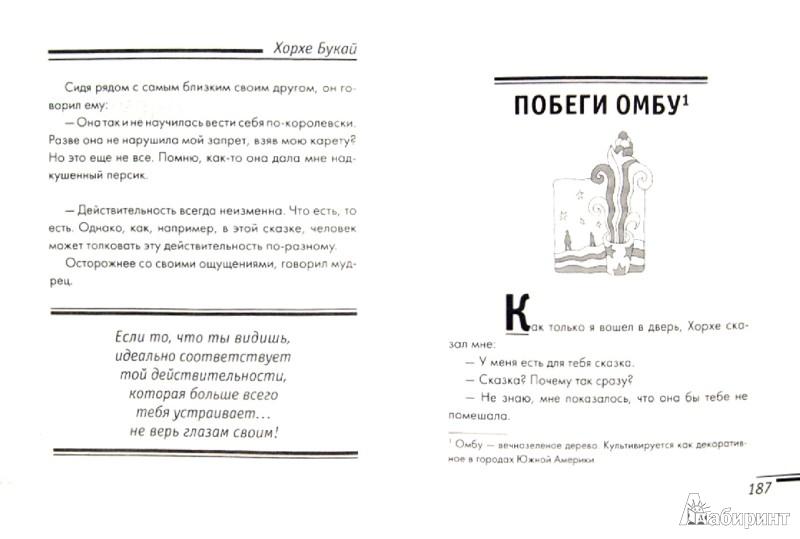 Иллюстрация 1 из 7 для Я хочу рассказать вам о... - Хорхе Букай   Лабиринт - книги. Источник: Лабиринт
