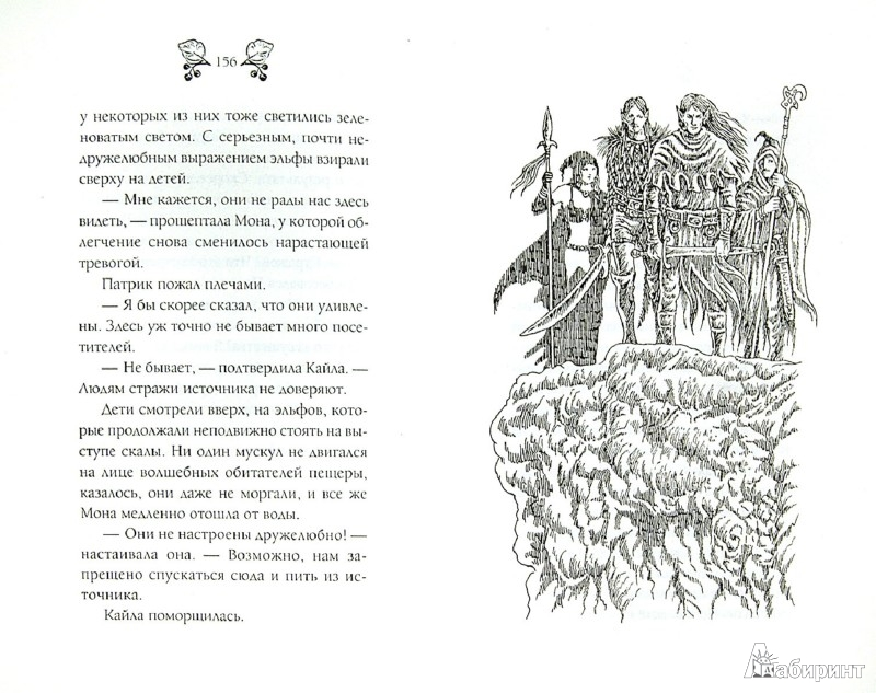 Иллюстрация 1 из 3 для Страна эльфов. Зачарованные - Ульрике Швайкерт | Лабиринт - книги. Источник: Лабиринт