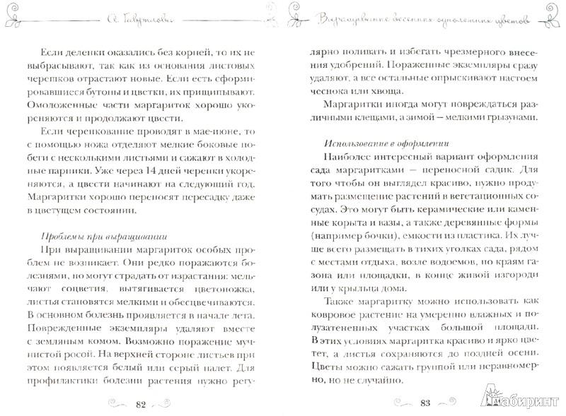 Иллюстрация 1 из 5 для Весенние цветы: тюльпаны, нарциссы, гиацинты, примула, морозник и другие - Анна Гаврилова | Лабиринт - книги. Источник: Лабиринт