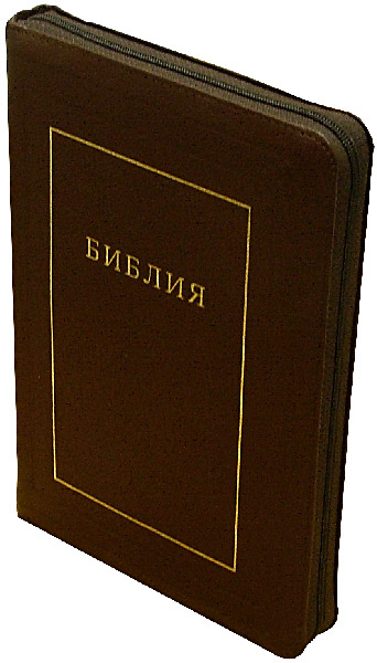 Иллюстрация 1 из 2 для Библия (большая, молния) | Лабиринт - книги. Источник: Лабиринт