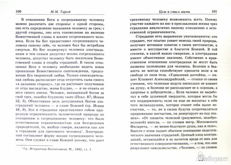Иллюстрация 1 из 3 для Цель и смысл жизни - Михаил Тареев   Лабиринт - книги. Источник: Лабиринт