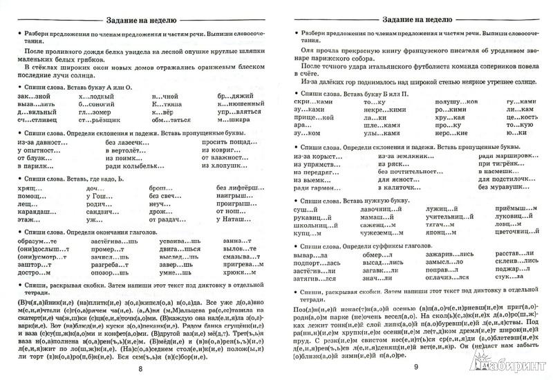 Иллюстрация 1 из 7 для Задания по русскому языку для повторения и закрепления материала. 4 класс - Узорова, Нефедова   Лабиринт - книги. Источник: Лабиринт