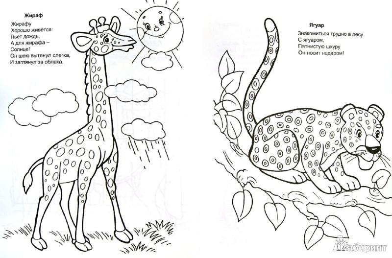 Иллюстрация 1 из 8 для Разноцветные животные - Владимир Борисов   Лабиринт - книги. Источник: Лабиринт
