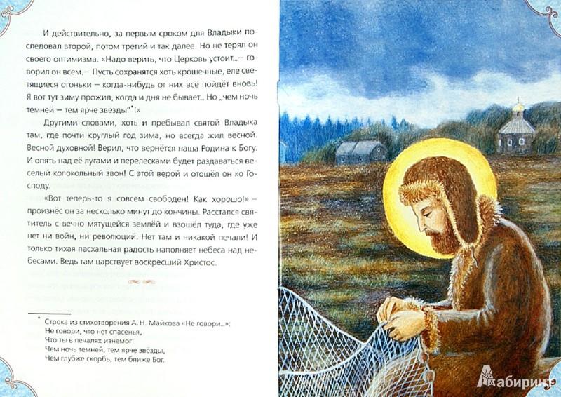 Иллюстрация 1 из 13 для Там, где всегда весна. Наши небесные друзья - Сергей Фонов | Лабиринт - книги. Источник: Лабиринт
