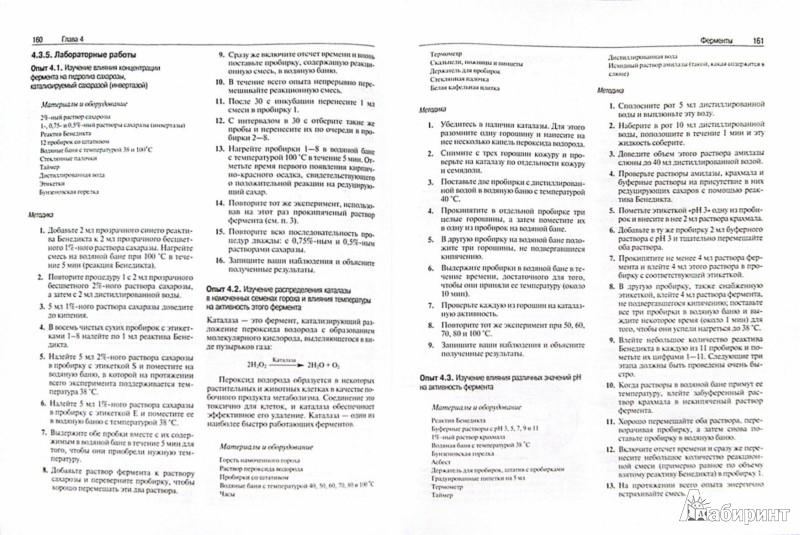 Иллюстрация 1 из 28 для Биология. В 3-х томах - Тейлор, Грин, Стаут | Лабиринт - книги. Источник: Лабиринт