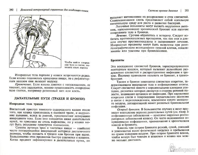 Иллюстрация 1 из 13 для Домашний ветеринарный справочник для владельцев кошек - Карлсон, Гиффин, Карлсон | Лабиринт - книги. Источник: Лабиринт