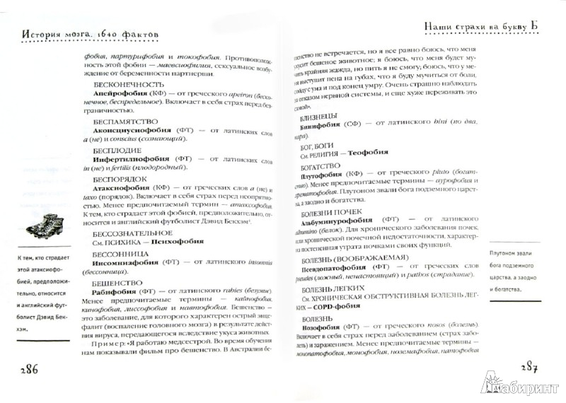 Иллюстрация 1 из 9 для История мозга. 1640 фактов - Стивен Джуан | Лабиринт - книги. Источник: Лабиринт