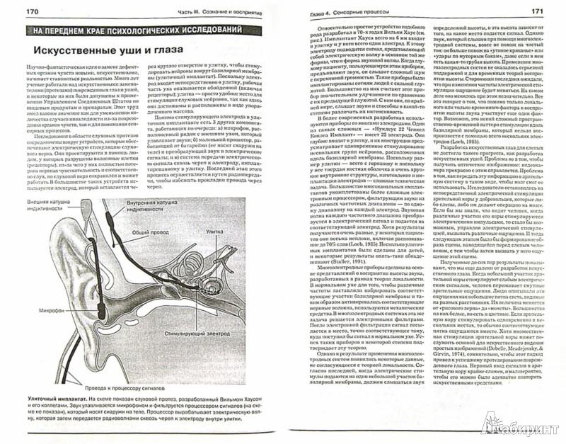 Иллюстрация 1 из 25 для Введение в психологию - Аткинсон, Аткинсон, Смит, Бем, Нолен-Хоэксема | Лабиринт - книги. Источник: Лабиринт