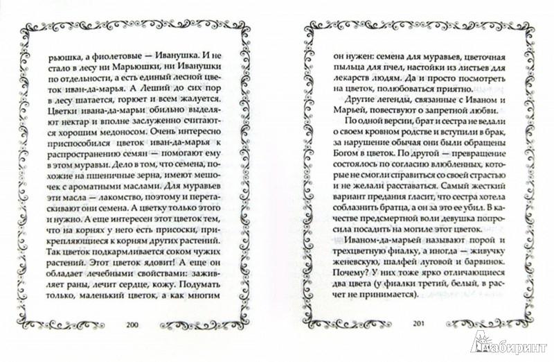 Иллюстрация 1 из 12 для Легенды и мифы о растениях. Легенды Древнего Востока, языческие мифы, античные предания | Лабиринт - книги. Источник: Лабиринт