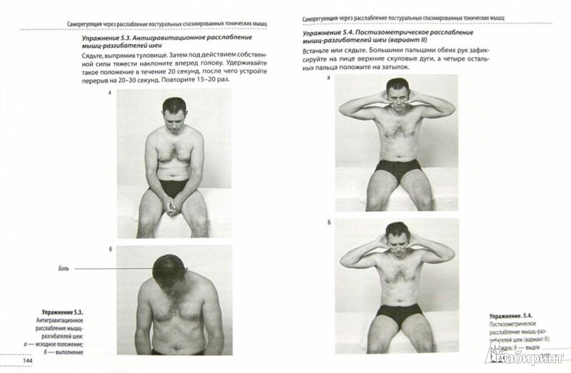 Иллюстрация 1 из 15 для Скульптурная гимнастика для мышц, суставов и внутренних органов - Анатолий Ситель | Лабиринт - книги. Источник: Лабиринт