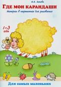 Где мои карандаши? Истории в картинках для рисования. Книга для бесед и занятий с детьми