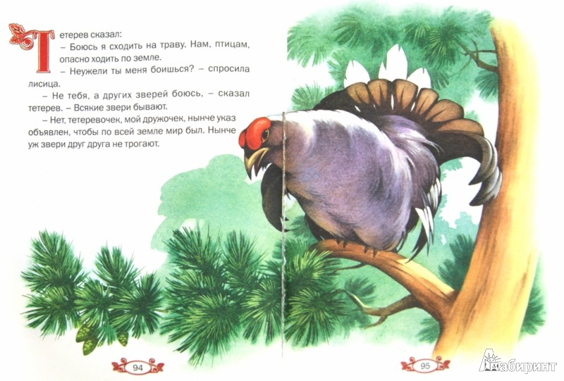 Иллюстрация 1 из 34 для Твои любимые сказки | Лабиринт - книги. Источник: Лабиринт