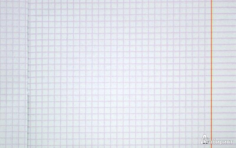 """Иллюстрация 1 из 18 для Тетрадь """"Грациозные лошади"""" А5, 48 листов, клетка (ТК484261)   Лабиринт - канцтовы. Источник: Лабиринт"""