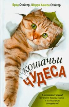 Кошачьи чудеса