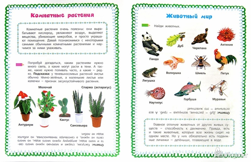 Иллюстрация 1 из 18 для Мир вокруг нас: Природа - Узорова, Нефедова | Лабиринт - книги. Источник: Лабиринт