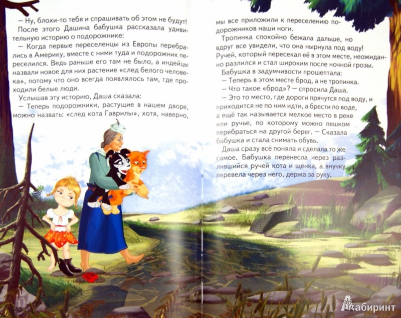 Иллюстрация 1 из 28 для Сказки Доктора Дятла - Алексей Шевченко | Лабиринт - книги. Источник: Лабиринт