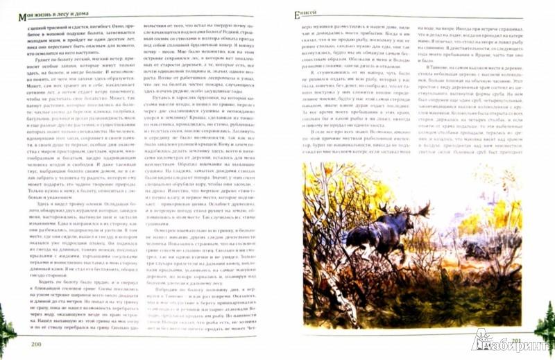 Иллюстрация 1 из 49 для Моя жизнь в лесу и дома - Валентин Пажетнов | Лабиринт - книги. Источник: Лабиринт
