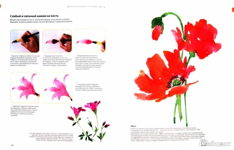 Иллюстрация 1 из 5 для Рисуем цветы акварелью за 30 минут - Фиона Перт   Лабиринт - книги. Источник: Лабиринт