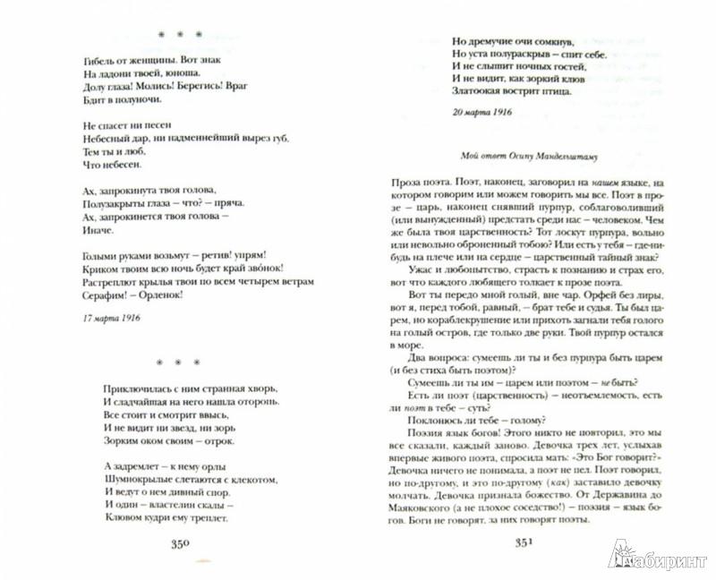 Иллюстрация 1 из 36 для Стихотворения. Поэмы. Проза - Марина Цветаева | Лабиринт - книги. Источник: Лабиринт