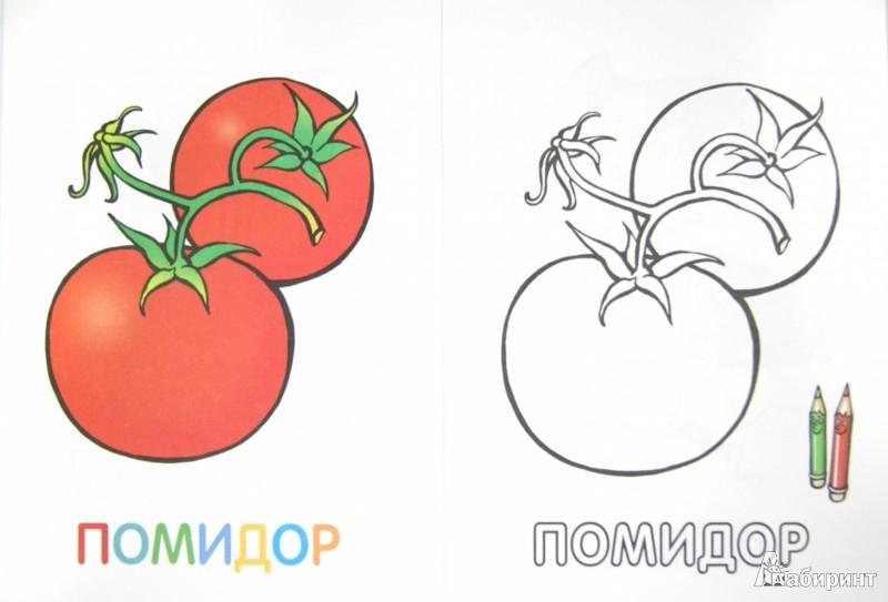 Иллюстрация 1 из 18 для Раскраска для малышей. Овощи ...