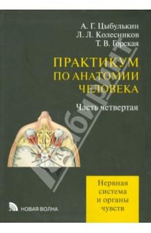 Практикум по анатомии человека. Часть 4. Нервная система и органы чувств