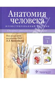 Анатомия человека. Иллюстрированный учебник. В 3-х томах. Том 1 анатомия по пирогову атлас анатомии человека в 3 х томах том 1 верхн конечн ниж конечн cd
