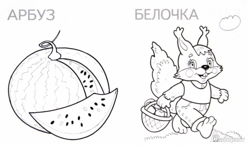 Иллюстрация 1 из 18 для Белка | Лабиринт - книги. Источник: Лабиринт