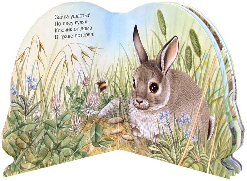 фотки стихи с зайчиками и картинки к стихам объявил