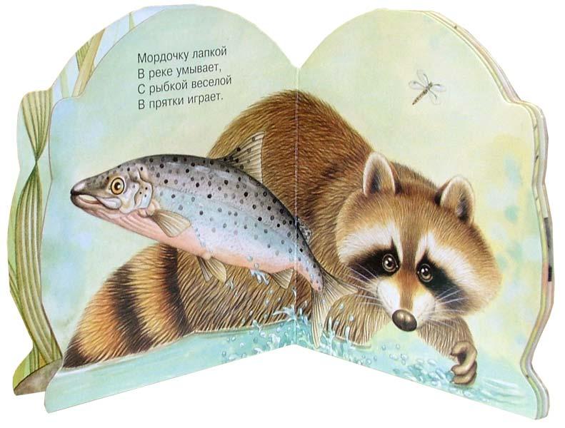 Иллюстрация 1 из 10 для Про енота. Зверята - В. Комаров | Лабиринт - книги. Источник: Лабиринт