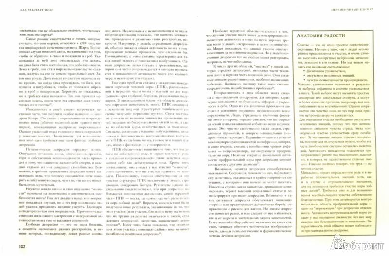 Иллюстрация 1 из 26 для Как работает мозг - Рита Картер | Лабиринт - книги. Источник: Лабиринт