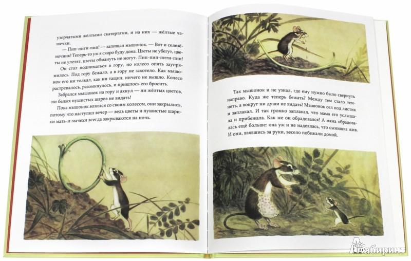 Иллюстрация 1 из 32 для Мышонок заблудился - Нина Павлова | Лабиринт - книги. Источник: Лабиринт