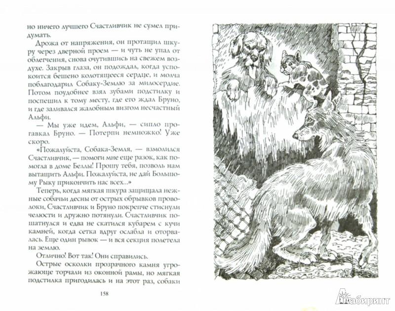 Иллюстрация 1 из 5 для Пустой город - Эрин Хантер | Лабиринт - книги. Источник: Лабиринт