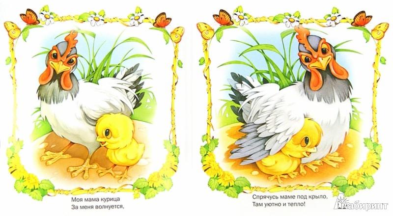 Сказки в картинках про цыплят
