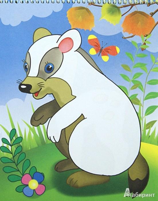 Иллюстрация 1 из 7 для Раскраска на гребне. Белка | Лабиринт - книги. Источник: Лабиринт